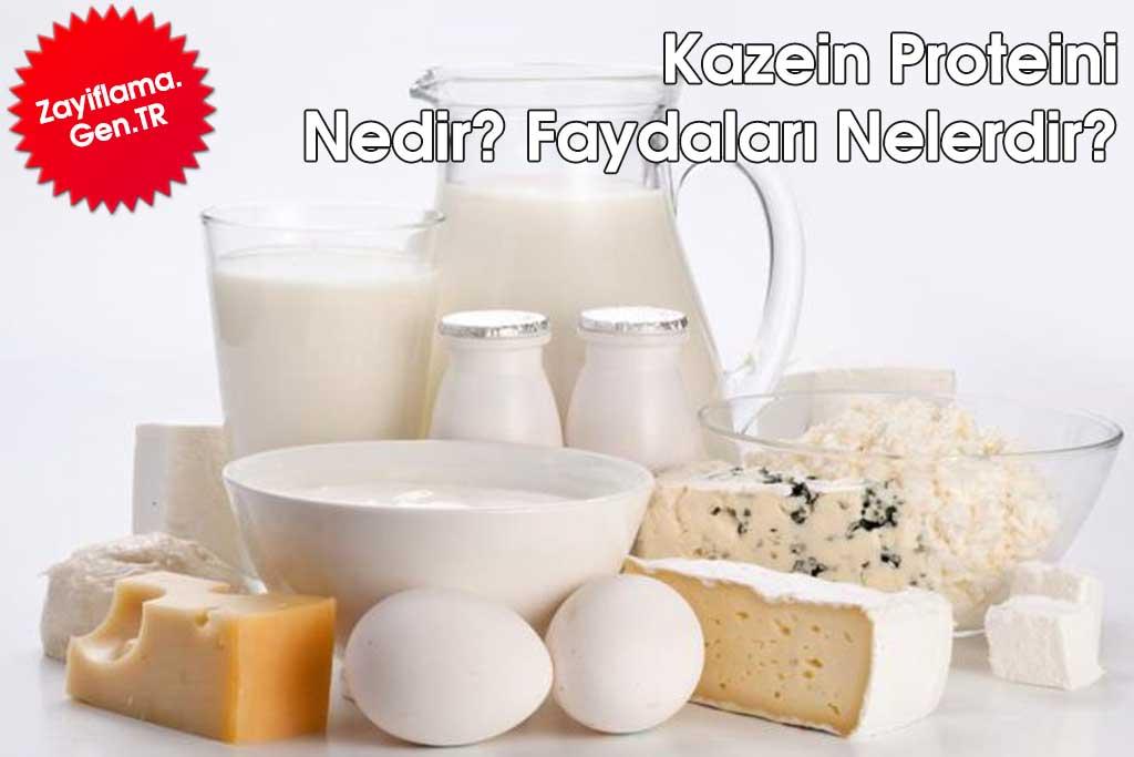 Kazein Proteini