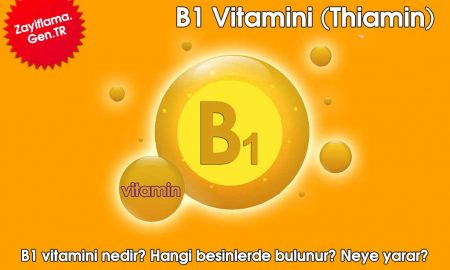 B1 Vitamini (Thiamin)