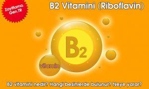 B2 Vitamini (Riboflavin)