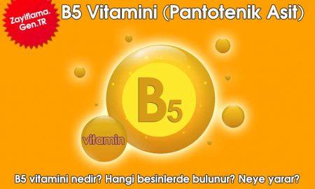 B5 Vitamini (Pantotenik Asit)