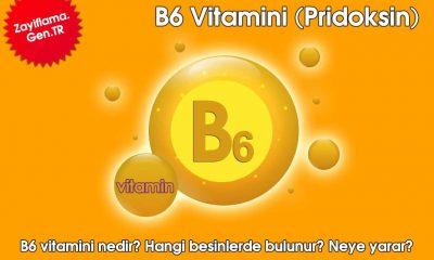 B6 Vitamini (Pridoksin)
