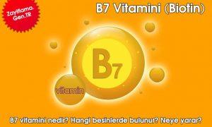B7 Vitamini (Biotin)