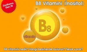 B8 Vitamini (İnositol)
