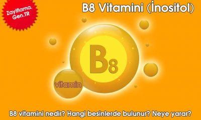 B8 Vitamini (İnositol)