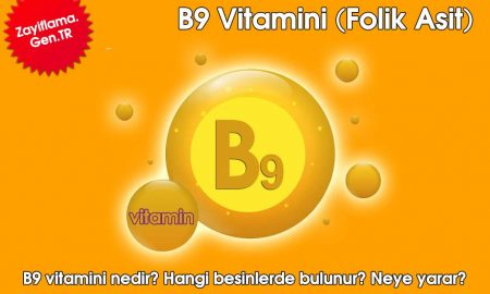 B9 Vitamini (Folik Asit)