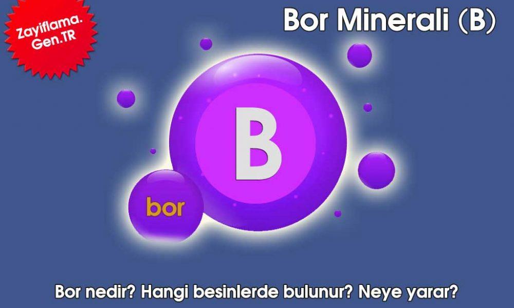 Bor Minerali