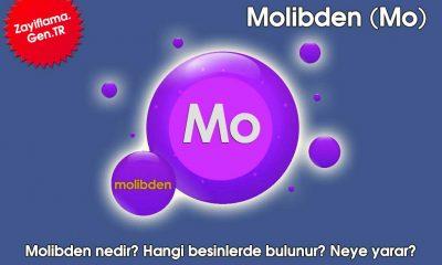Molibden Mimeral