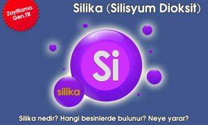 Silika (Silisyum Dioksit)