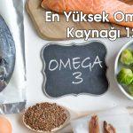 En Yüksek Omega 3 Kaynağı 12 Gıda