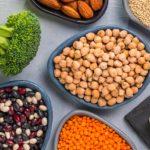 Bitkisel Protein Kaynakları