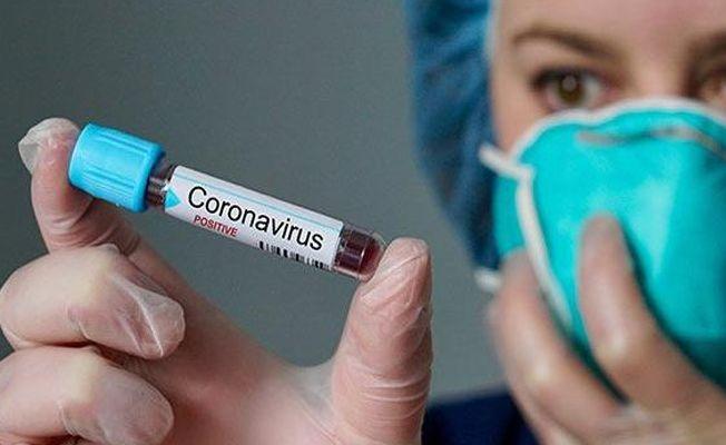 Corona Virüsü