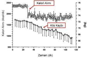 Proteinden Zengin Diyetin Kilo Verme Üzerine Etkisi   27 Şubat 2021